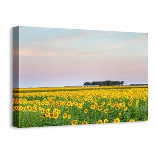 Easy Art Prints Chuck Haney's 'Train Passes By Field Of Sunflowers In Michigan' Premium Canvas Art