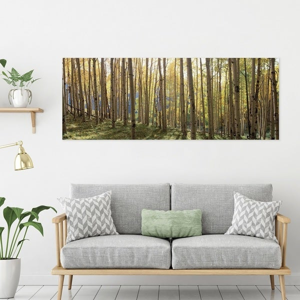 Shop Yosemite Home Decor Sunlit Colorado Trees Tempered Glass Wall