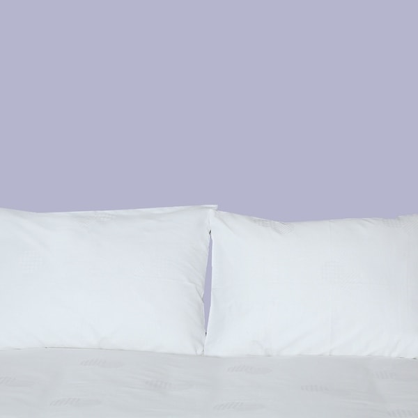 Wrinkle-Free Woven Swiss Dots Sheets 600 Thread Count Bed Sheets Set