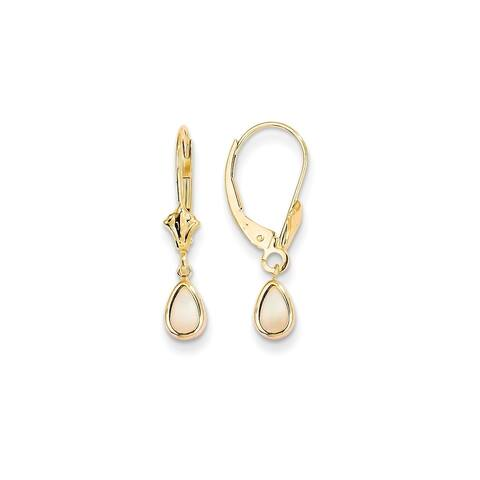 14K Yellow Gold Polished 6x4mm Opal October Earrings by Versil