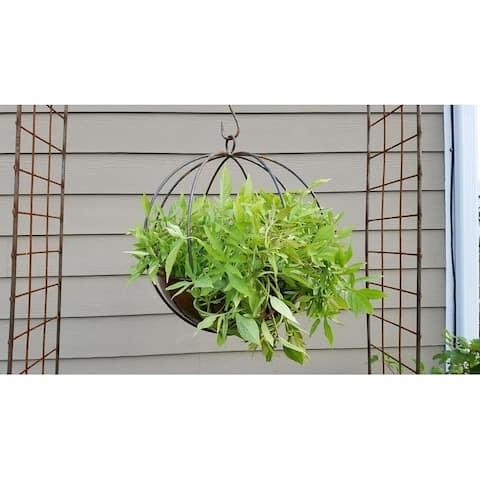 Large Hanging Globe Planter