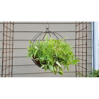 Large Hanging Globe Planter
