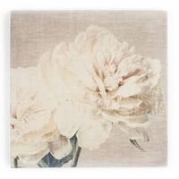 Graham & Brown Cream Petals Fabric Canvas