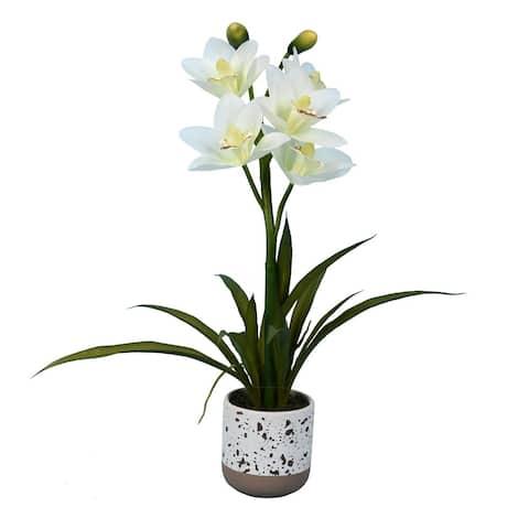 "Vickerman 19"" Artificial White Cymidium Plant"