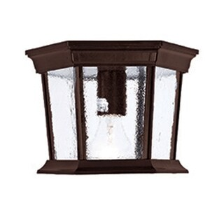 Acclaim Lighting Dover Collection 1-Light Outdoor Burled Walnut Ceiling-Mount Light Fixture