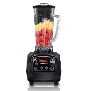 GoWISE USA 1450W High-Performance 2 HP ProBlender