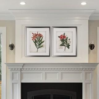 Scarlet Botanical I -2 Piece Set - Silver Frame