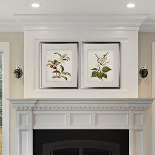 Vintage Botanical Sketch IV -2 Piece Set - Silver Frame