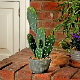 15 Inch Potted Prickly Pear Cactus in Cement Base