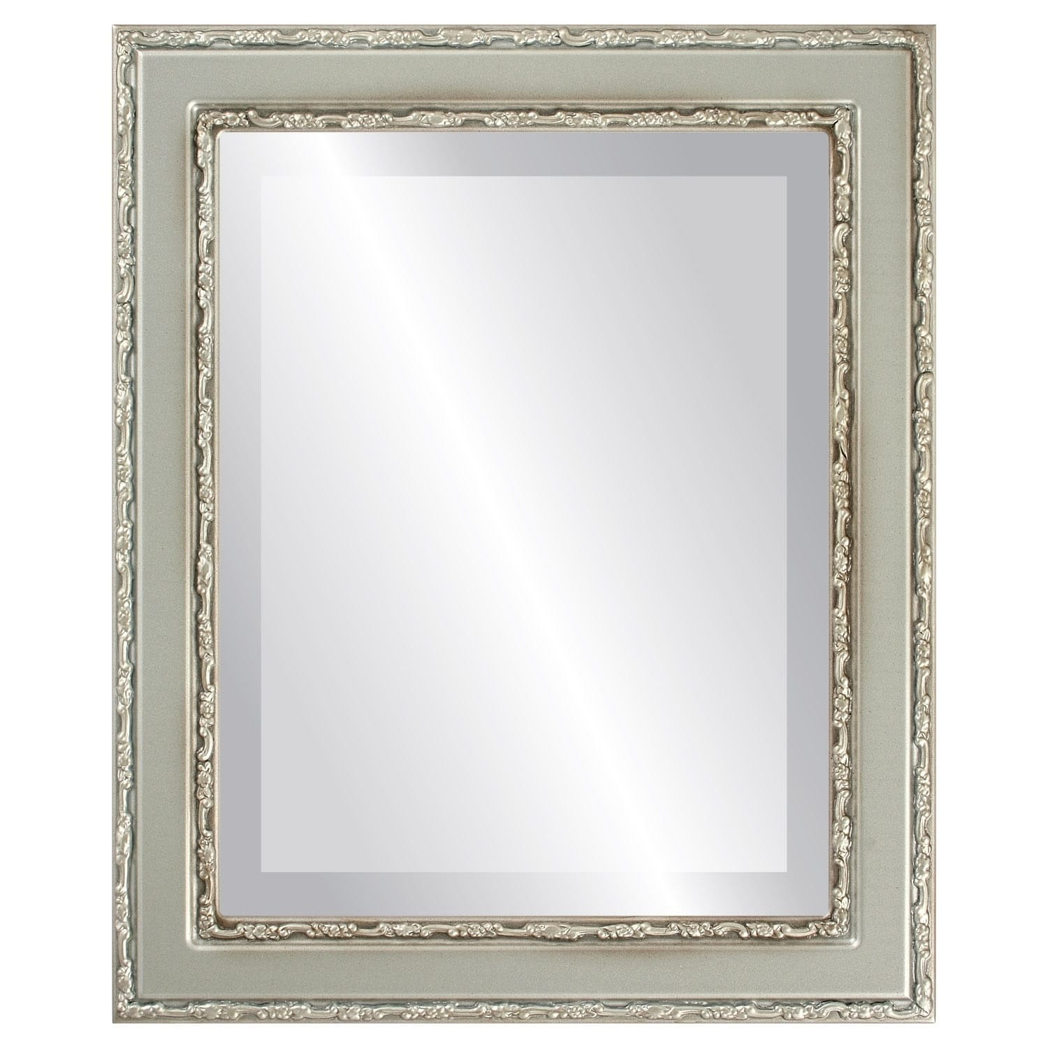 Monticello Framed Rectangle Mirror in Silver Shade - Silver/Brown (21x27)
