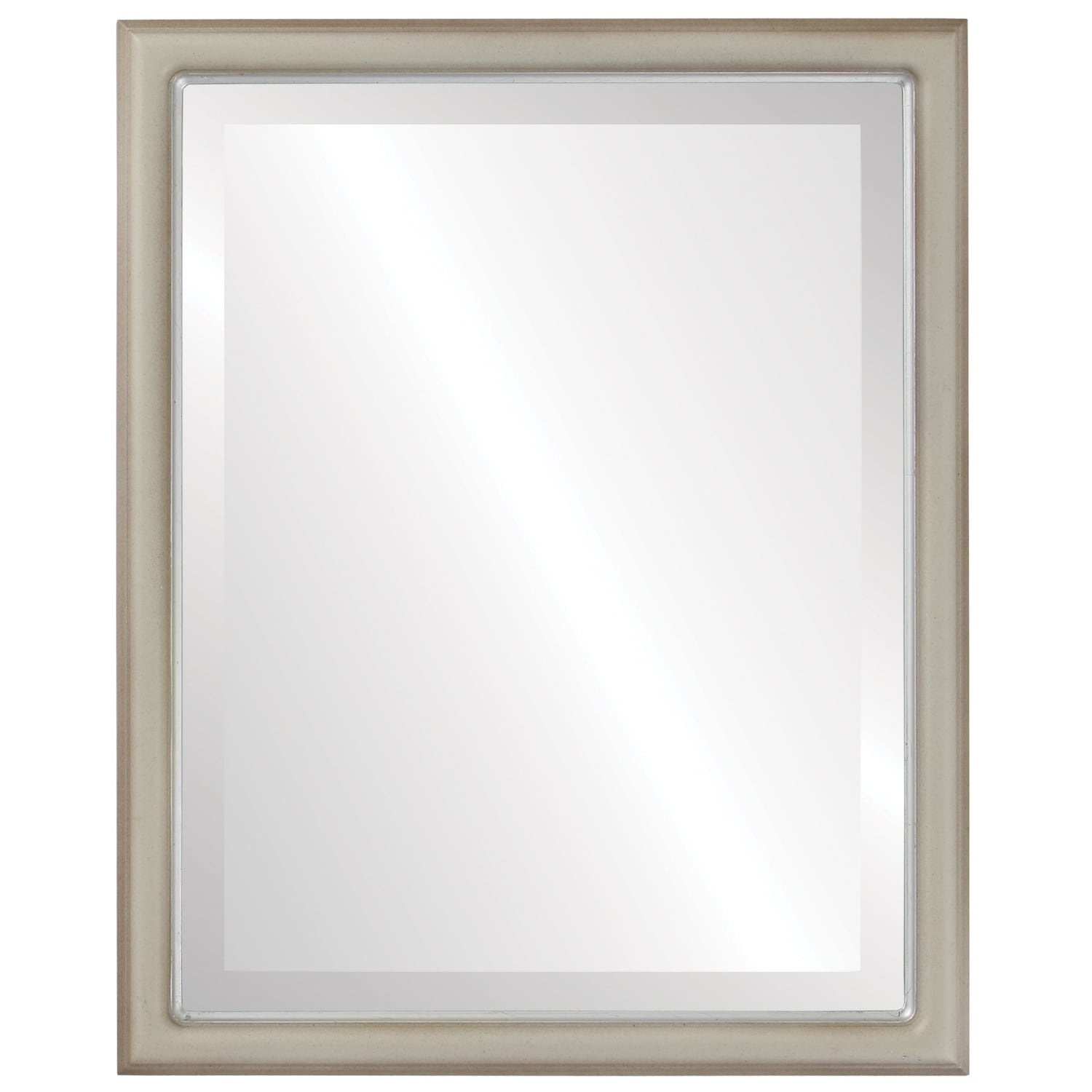 Hamilton Framed Rectangle Mirror in Taupe with Silver Lip (21x25)