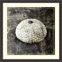 Framed Art Print 'Marble Shell Series I' by Edward Selkirk