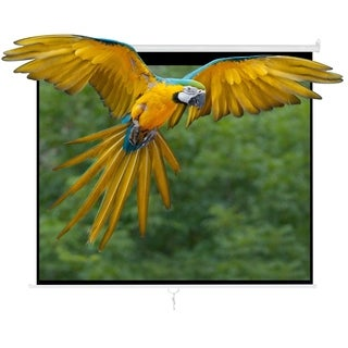 "100"" 4:3 HD Manual Projector Screen w/ Auto Lock Home Theater Office Wall Mounted Ceiling Pull Down Projection"