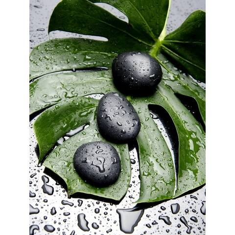 15.74''H Green/Black Canvas Wall Art