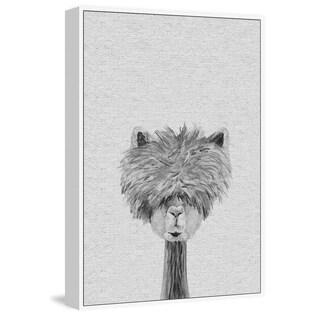 Bushy Haired Llama III' Floater Framed Painting Print on Canvas