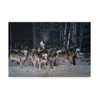 Ron Parker 'Breaking The Silence Wolves' Canvas Art