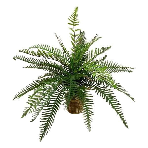 Real touch river fern floor plant in basket - Green