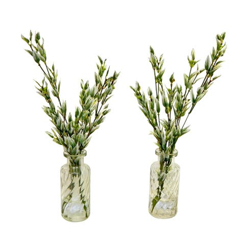 Natural bamboo stems in perfume glass - Green