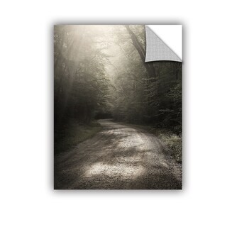ArtWall Nicholas Bell 'Back Country Road' Removable Wall Art Mural