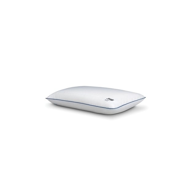 Shop Sealy Conform Cooling Memory Foam Bed Pillow Free