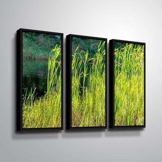 ArtWall Richard James 'Grasses' 3 Piece Floater Framed Canvas Set