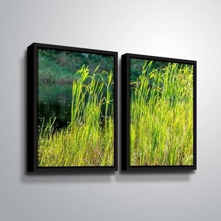 ArtWall Richard James 'Grasses' 2 Piece Floater Framed Canvas Set