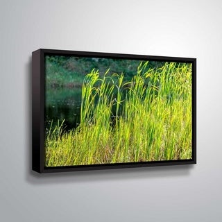 ArtWall Richard James 'Grasses' Gallery Wrapped Floater-framed Canvas