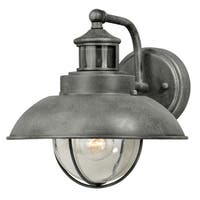 """Vaxcel Harwich Dualux® 10"""" Outdoor Wall Light Textured Gray"""