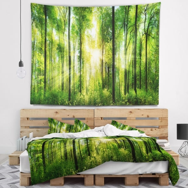 Designart 'Forest with Rays of Sun Panorama' Landscape Wall Tapestry