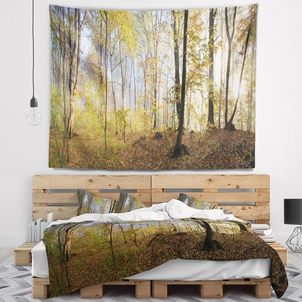 Designart 'Green Autumn Forest in Morning' Landscape Photography Wall Tapestry