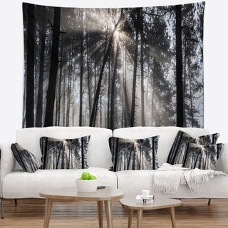 Designart 'Sunbeams through Black White Forest' Forest Wall Tapestry