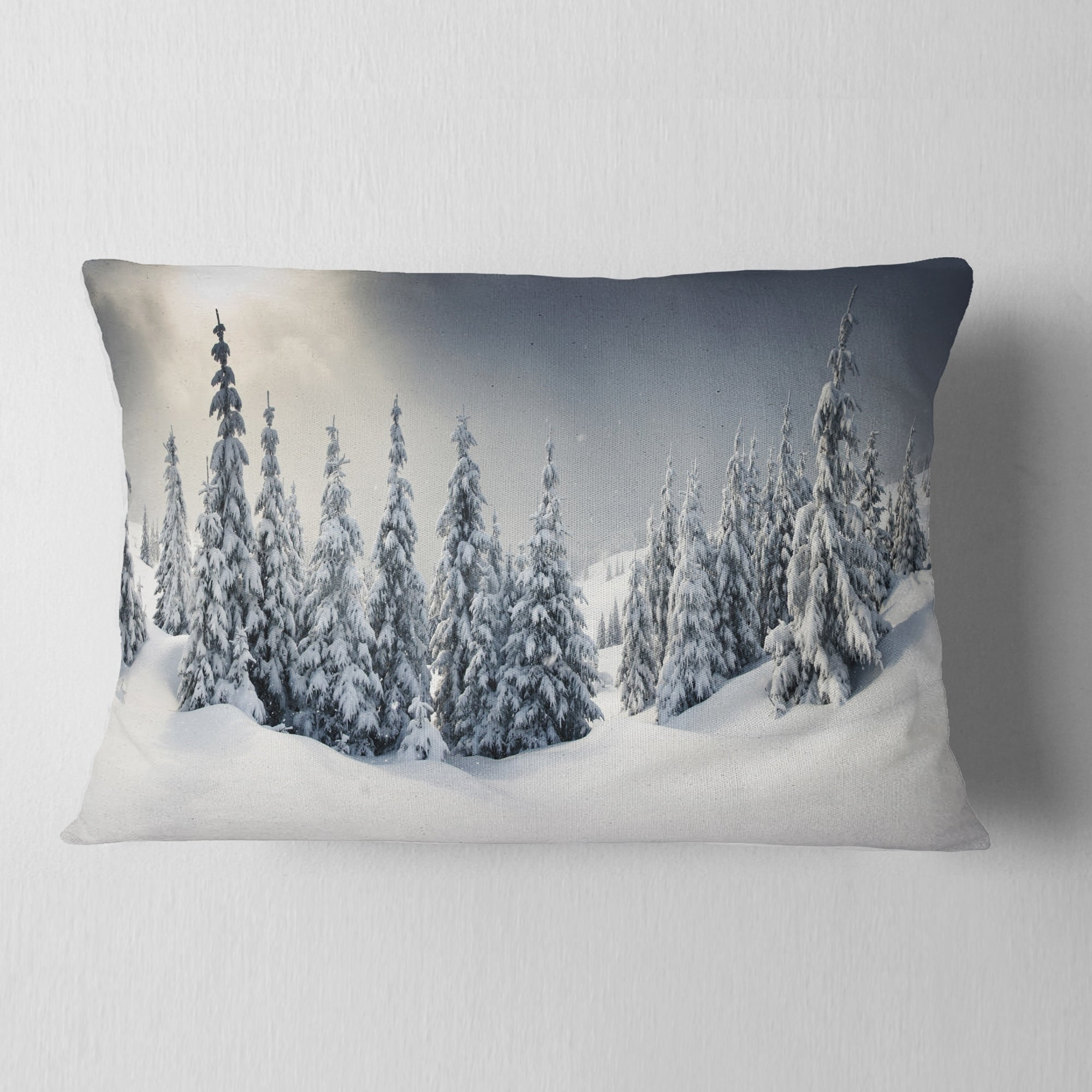 Designart Winter Landscape Photography Throw Pillow Overstock 20890173