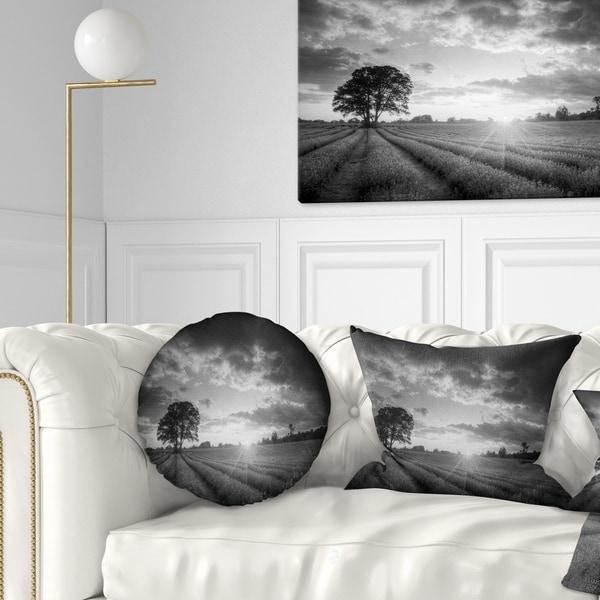 Designart 'Vibrant Black White Lavender Field' Landscape Printed Throw Pillow