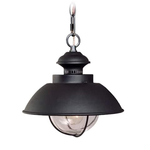 Harwich 1 Light Black Coastal Outdoor Barn Dome Pendant Clear Glass - 10-in W x 10.75-in H x 10-in D
