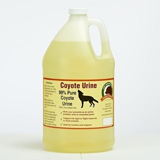 128oz Coyote Urine