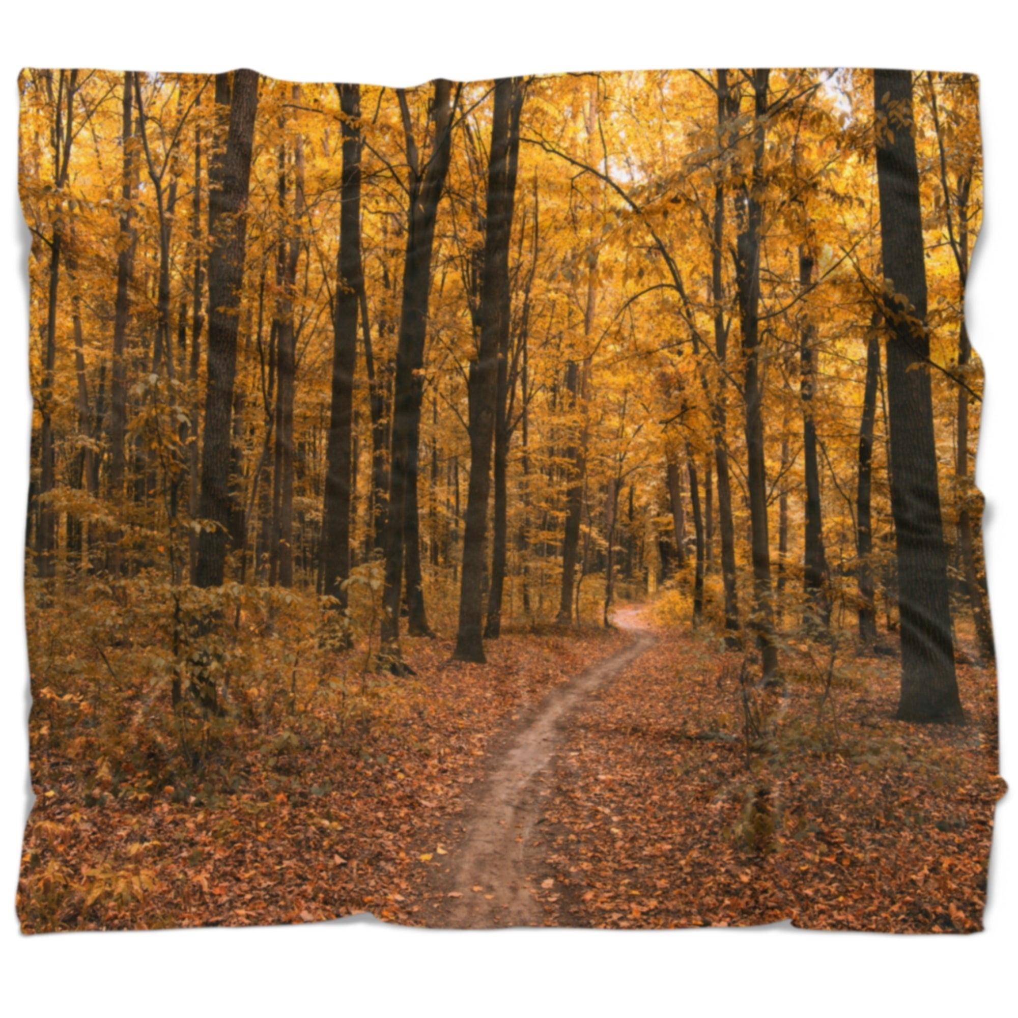 Designart Path In The Yellow Fall Forest Modern Forest Throw Blanket On Sale Overstock 20920449 71 In X 59 In