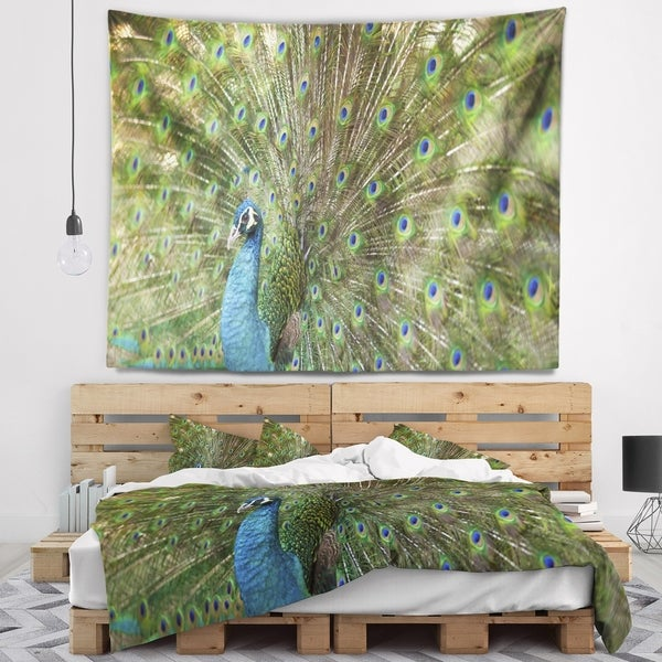 Designart 'Beautiful Peacock with Feathers' Animal Wall Tapestry