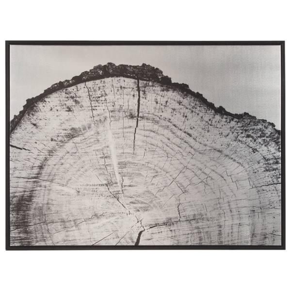 Shop Dorika Tree Ring Wall Art Overstock 20921858