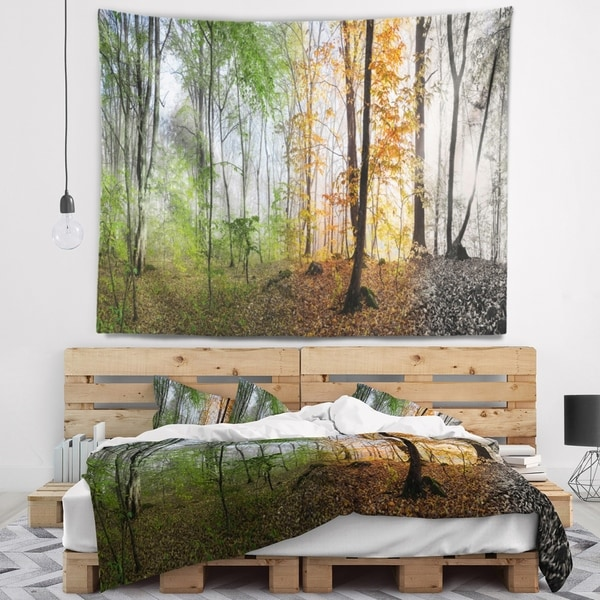 Designart 'Morning Forest Panorama' Landscape Photography Wall Tapestry
