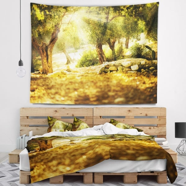 Designart 'Olive Trees' Photography Wall Tapestry