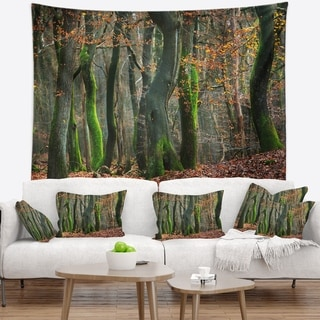 Designart 'Autumn Forest in the Netherlands' Landscape Photography Wall Tapestry