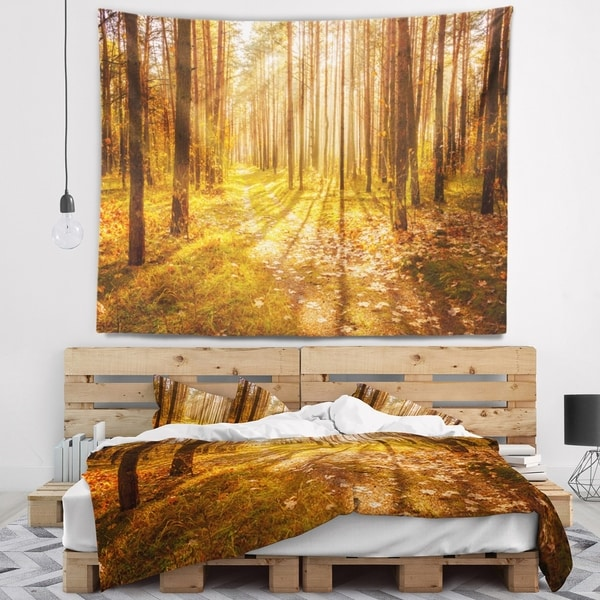Designart 'Bright Sunlight in Yellow Fall Forest' Modern Forest Wall Tapestry