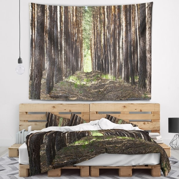 Designart 'Even Rows of Pine Tree Forest' Modern Forest Wall Tapestry