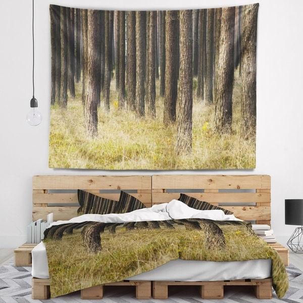 Designart 'Dark Fall Forest with Green Grass' Modern Forest Wall Tapestry