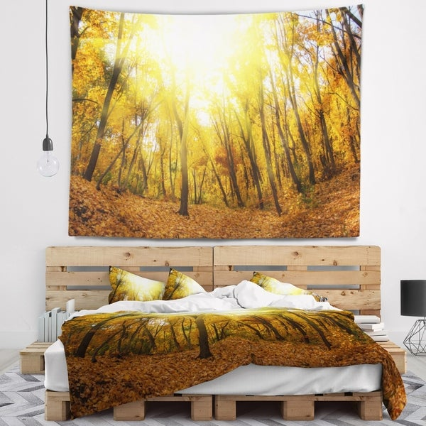 Designart 'Yellow Autumn Forest in Sunlight' Forest Wall Tapestry