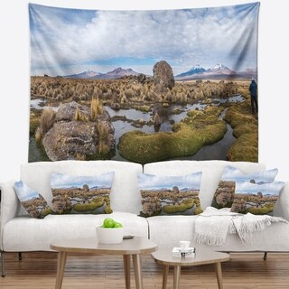 Designart 'Bolivia Volcanoes Panoramic View' Landscape Wall Tapestry
