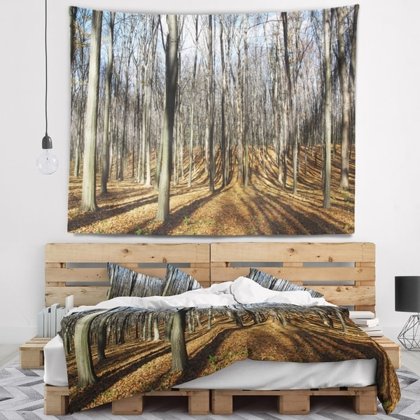 Designart 'Shade from Sun in Autumn Forest' Modern Forest Wall Tapestry