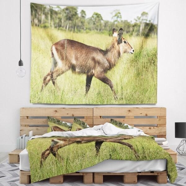 Designart 'Waterbuck Antelope in Green Grass' African Wall Tapestry
