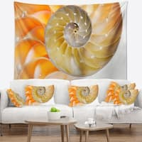 Designart 'Isolated Nautilus Shell' Contemporary Wall Tapestry