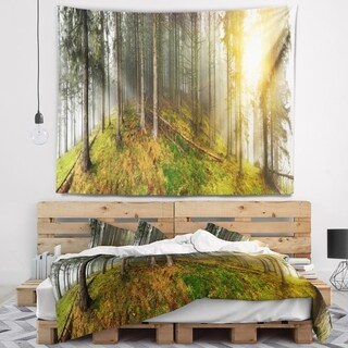 Designart 'Early Morning Sun in Forest' Landscape Photography Wall Tapestry